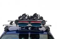 Rhino Ski Rack 6